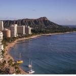 ハワイにおける亀の意味するものとは?