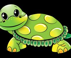 亀 種類 しっぽ 長い